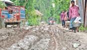 The Sahorabari road in Dhunat upazila