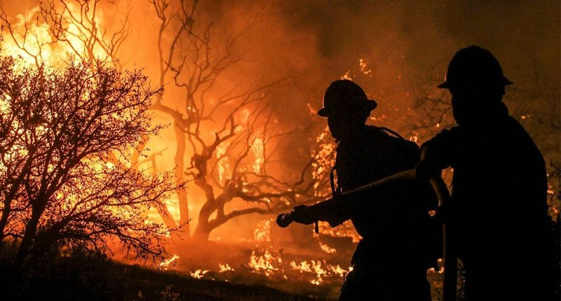 US firefighters battle suicidal thoughts after the blaze