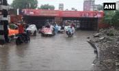 Kerala: Flood-hit India state battles rat fever outbreak