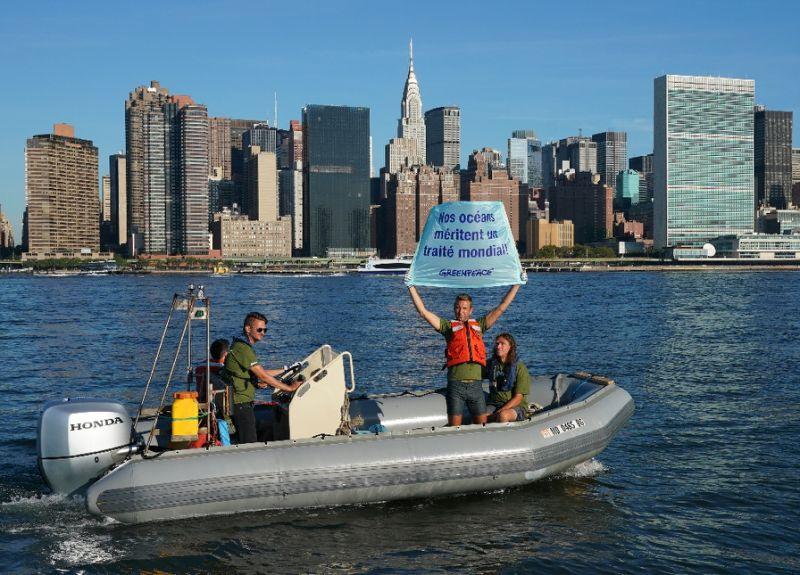 UN kicks off talks on high seas treaty