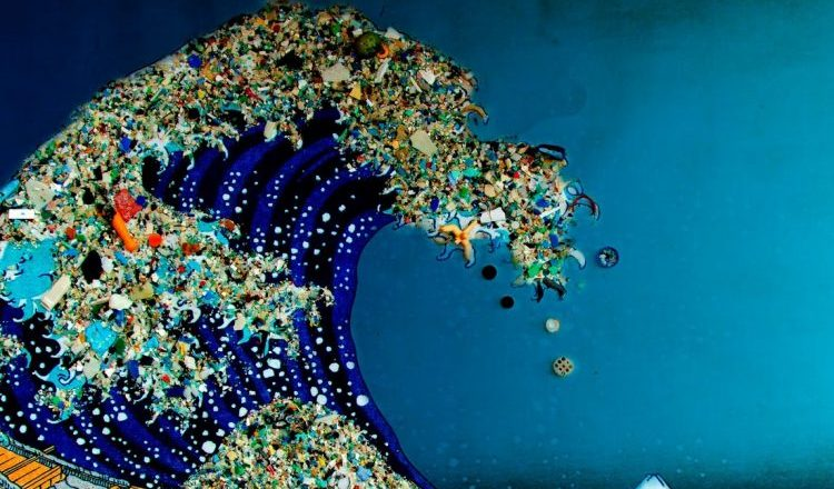 World's biggest sovereign fund pleads to save oceans