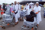 49,716 Hajj pilgrims return home