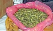 New deadly drug finds market in Bangladesh