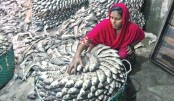 Woman preserves salted hilsa