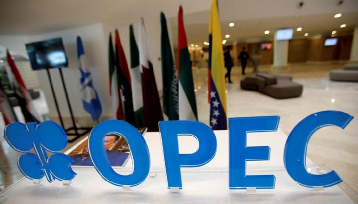 Iran says OPEC has 'not much credit' left