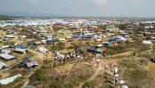Rohingya influx puts Cox's Bazar's biodiversity at risk: UN report