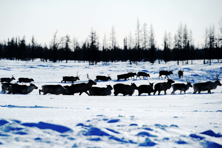 Melting permafrost threatens climate rescue plan: study
