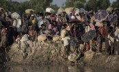 ICC opens Myanmar Rohingya crimes probe