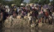 ICC opens Myanmar Rohingya crimes probe