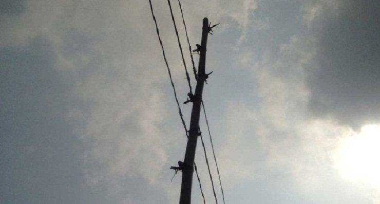 4 electrocuted in Cumilla