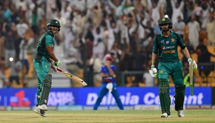 Experienced Malik manages overcome Afghanistan scare