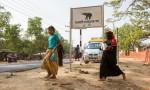 Govt focuses on keeping animal movement in Cox's Bazar undisturbed