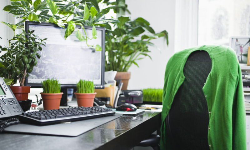 How to keep home, office air fresh