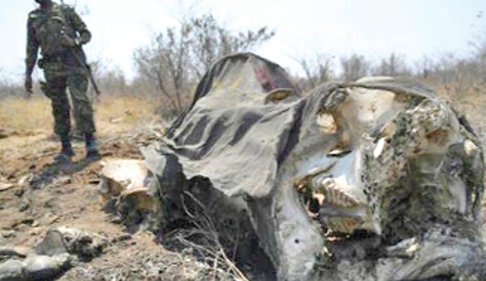 Botswana fights claims of elephant poaching spree