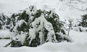 45 trekkers missing in India's northern state after heavy snowfall