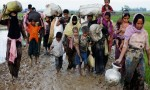 Finland praises govt for support to Rohingyas