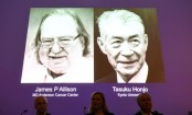 Nobel Prize in Medicine to American, Japanese