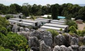 Medical charity MSF 'told to cease mental health work in Nauru'