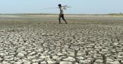 World needs 'unprecedented' response to meet 1.5C warming cap: UN