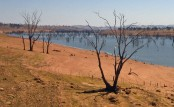 Higher El Nino warming risk turns up heat on drought-hit Aussie areas