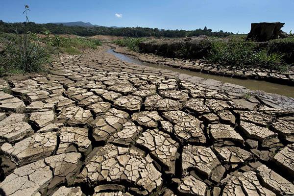 Climate change 'at point of no return': Ban ki-Moon