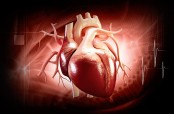 U.S. scientists create new drug to sustain oxygen-starved hearts