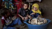 UN agency urges open access for aid to Yemen