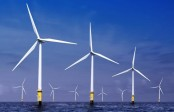 Wind farm 'predator' effect hits ecosystems: study