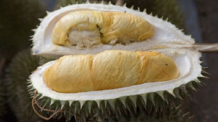Tonnes of stinky durian cause Indonesian flight grounded