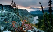 Conservation land in British Columbia gets $11m investment