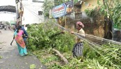 11 killed as Cyclone Gaja ravages Indian coast