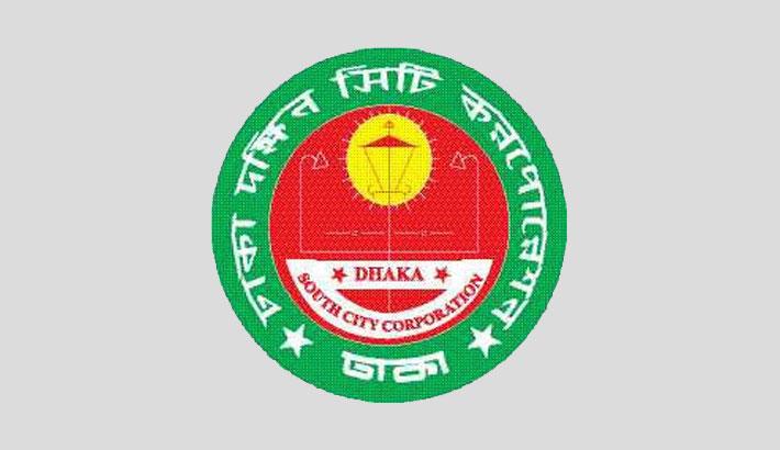 DSCC conducts drive to remove election campaign materials