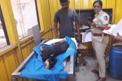 Dog which allegedly gang-raped dies