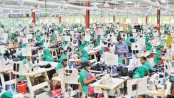Export earnings notch 17.24pc growth during July-Nov
