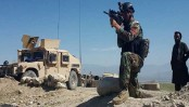 Afghan forces kill 14 militants in eastern province: official