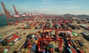 China export growth slows in November: customs data