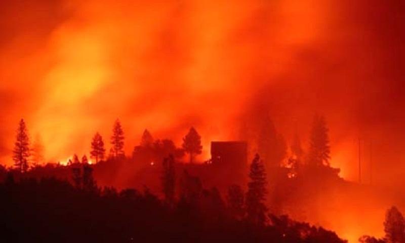 California fire survivors face bleak Christmas in shelters