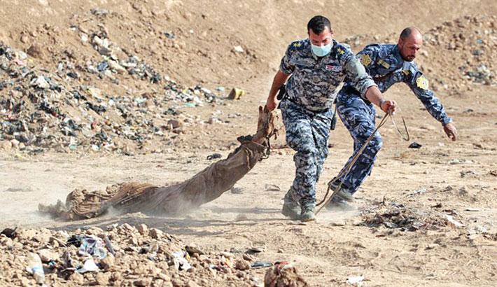 Dozens of bodies 'found in IS mass grave' in Iraq