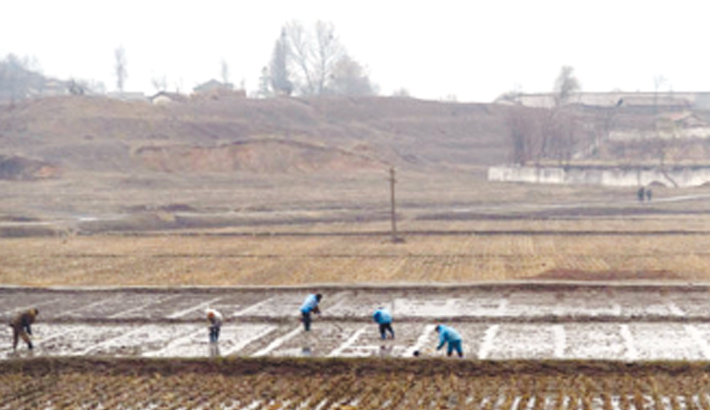 N Korea admits farming  failures amid food shortages