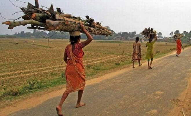 West Bengal tribals battling food scarcity: study