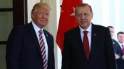 Erdogan, Trump discuss creating security zone in Syria