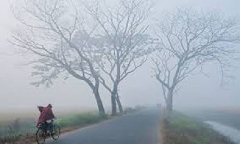 Mild  cold wave sweeps over parts of the country