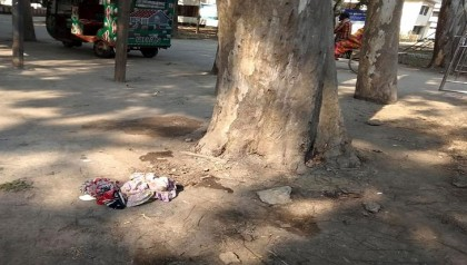 Ejected from hospital, woman bears child under tree in Panchagarh