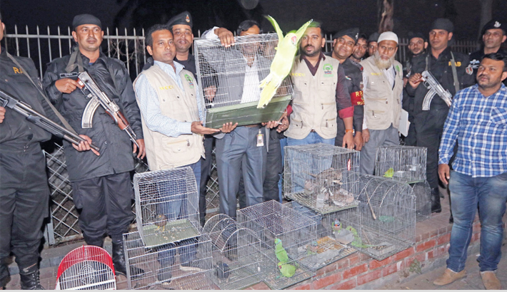469 birds rescued,  10 held