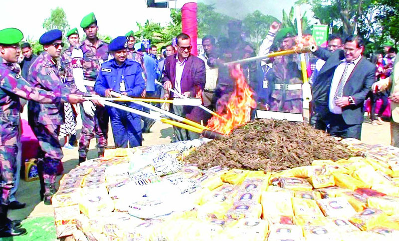 Border Guard Bangladesh burns huge contraband cigarettes, ganja