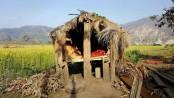 Nepali women dies in outlawed 'menstruation hut'