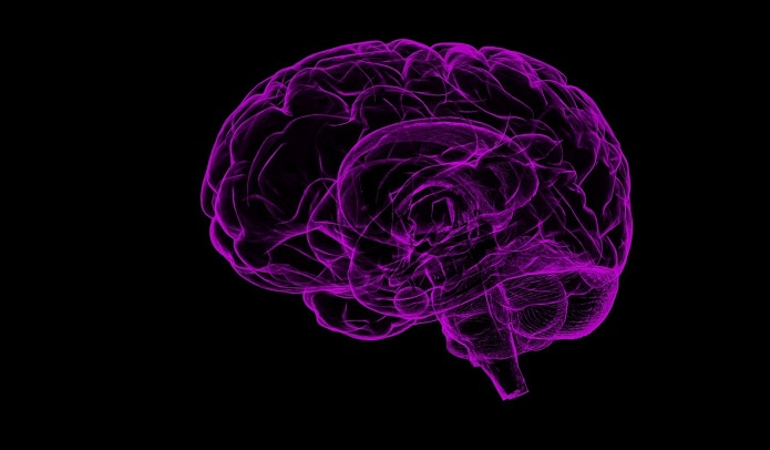 Train your brain to form good habits