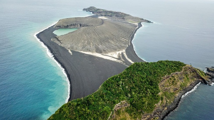 New Tonga island 'now home to flowers and owls'