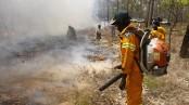 Aboriginal hunters' fires help restore an Australian desert
