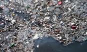 Environment in multiple crises – report
